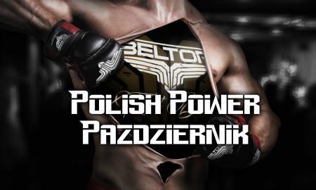 polsih-power-pazdziernik