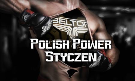 Polish Power styczeń