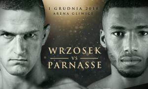 Wrzosek vs Parnasse KSW 46